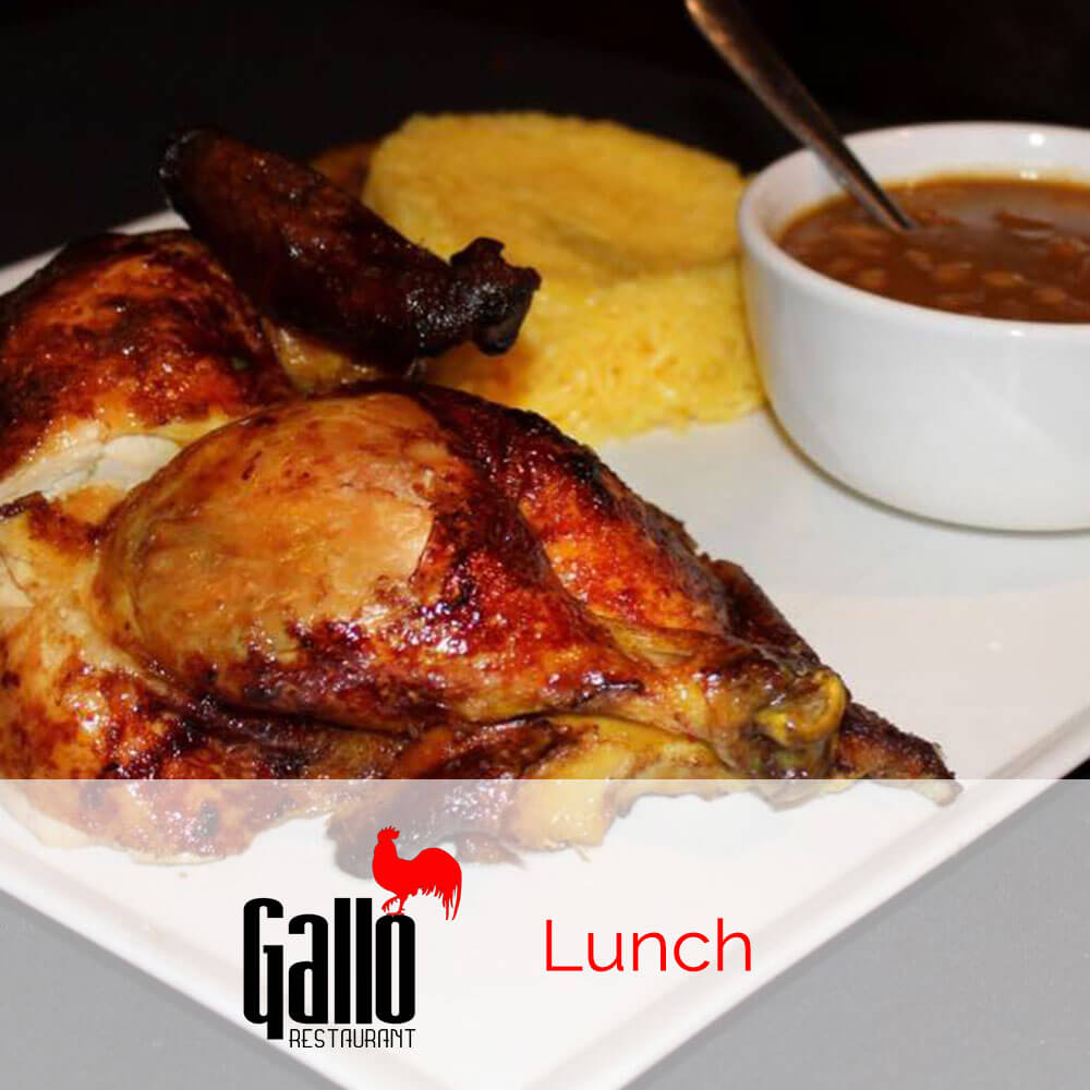 Gallo Restaurant Patchogue Lunch Menu